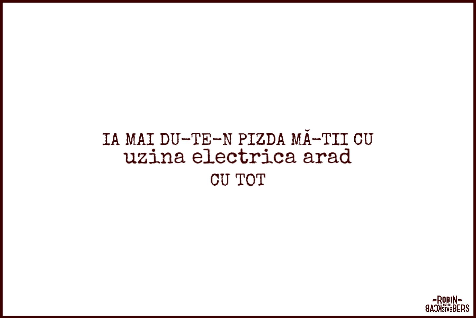 uzina electrica Arad